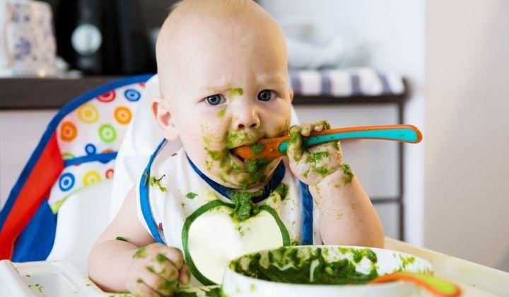 l alimentation du bebe a 8 mois bien