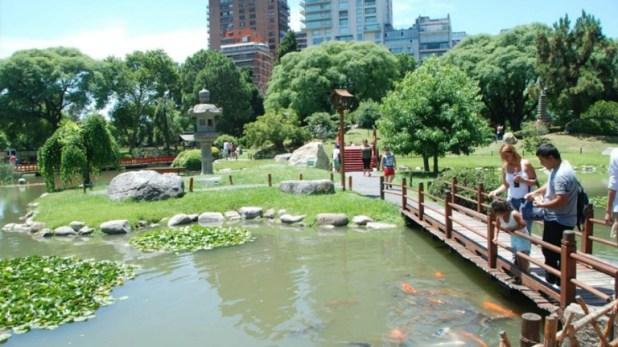 Los tradicionales peces koi del Jardín Japonés de la Ciudad de Buenos Aires