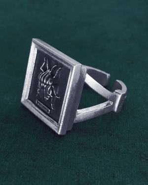 Square ring with harlequin beetle-bug in small entomological frame in 925 silver handmade | Res Mirum