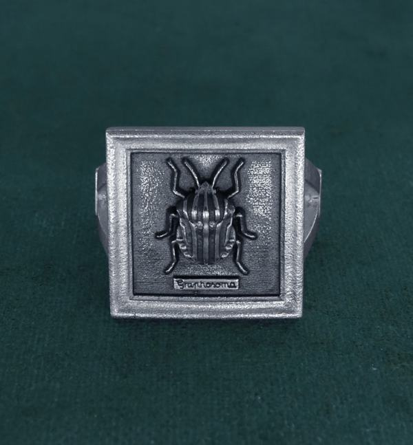 Square ring with harlequin beetle-bug in small entomological frame in 925 silver handmade seen from the front | Res Mirum