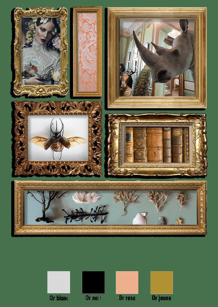 Histoire de la ligne Muséum