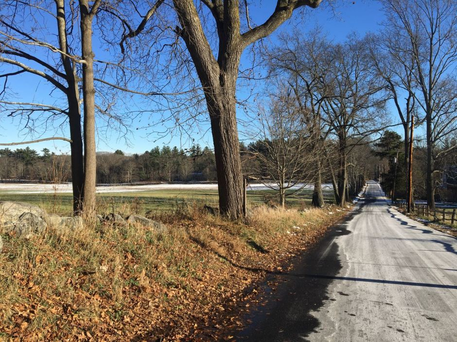 Country Road, Lincoln, Massachusetts