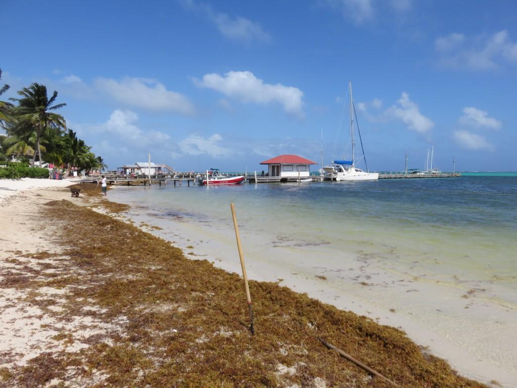 West Coast Florida Beaches