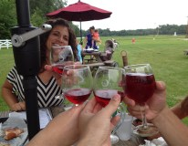 We visited a vineyard by Lake Erie, Cheers!