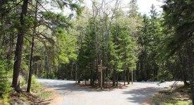 Acadia National Park, FRCH Creative Fuel