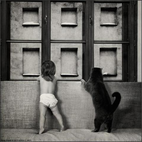 Andy-Prokh, Girl-and-Cat, Black-and-white, black-and-white-photography