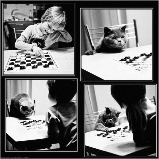 Andy-Prokh, The-Gamesters-Checkers, The-Gamesters, girl-and-cat, black-and-white, black-and-white-photography