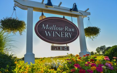 Customer Spotlight: Mallow Run Winery
