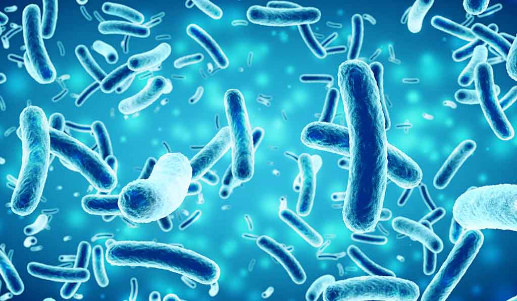 Bacteria on blue background