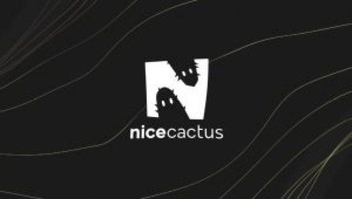 Nicecactus