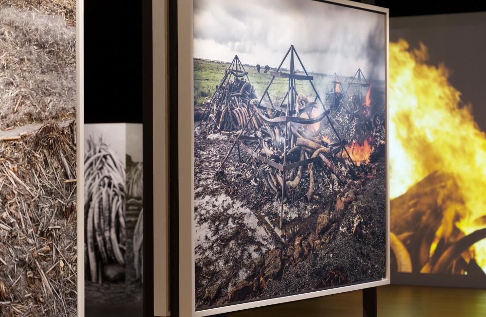 Tekniska öppnar – digital pressvisning av nya utställningarna Moving to Mars och Antropocen 4