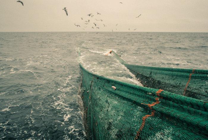 Stopp for torskfiske en skandal