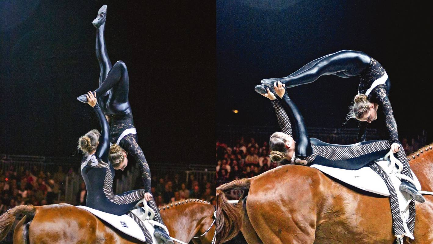 Beginner S Guide To Equestrian Vaulting Stuff Co Nz