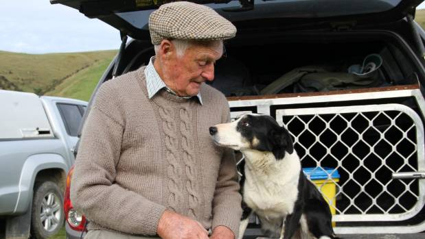 Les Roughan (93), of Mandeville, with heading bitch Fay in 2015, is the oldest qualifier for the South Island champs ...
