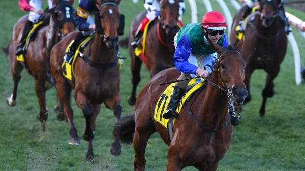 Big weekend for Bonneval finishes with Horse of the Year ...
