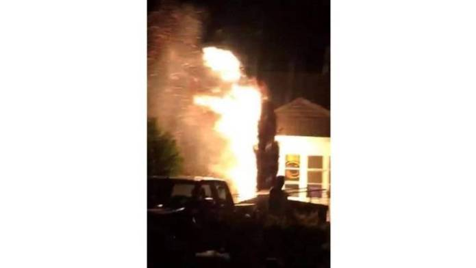 It is believed that firecrackers cause a tree fire on Saturday night in Blenheim.