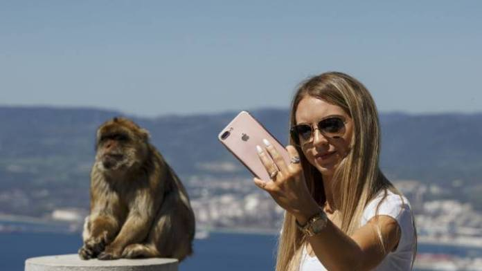A tourist poses for a selfie in front of a monkey at the top of Gibraltar Rock.