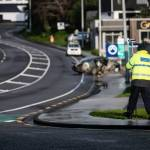 Driver, 21, of vehicle that crashed in New Plymouth has died in hospital 💥🚑🚓🚑🚓🚑🚓💥