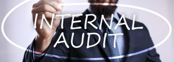 Internal Auditor job description template | Workable