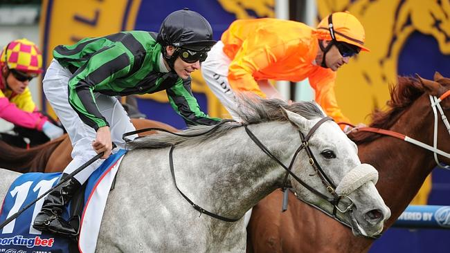 Ben Melham riding gris Caro wins at Caulfield Racecourse.