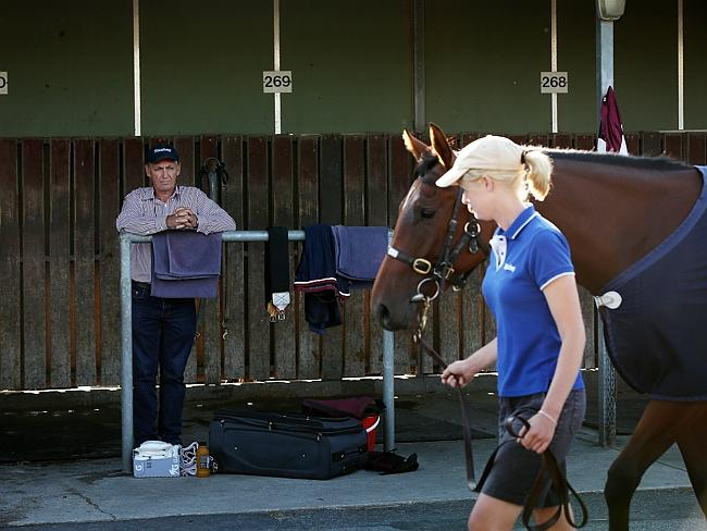 Peter Snowden watches on as Earthquake is walked in front of him at the Cranbourne Traini