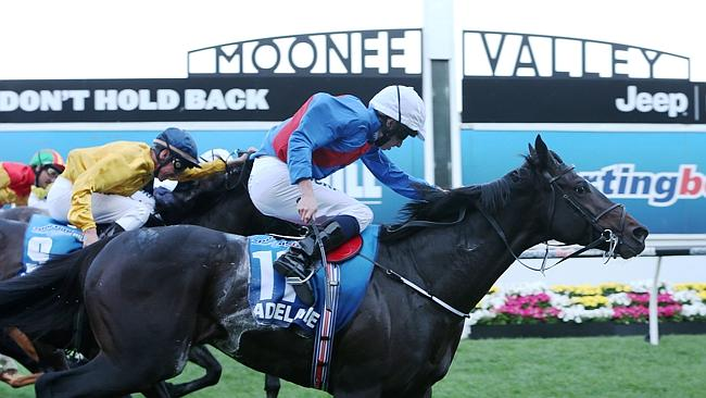 Adelaide with Ryan Moore aboard wins the Cox Plate last year / Picture: Ian Currie