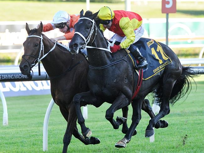 Jim Cassidy and Grand Marshal storm home late to win this year's Group 1 Sydney Cup. Pict