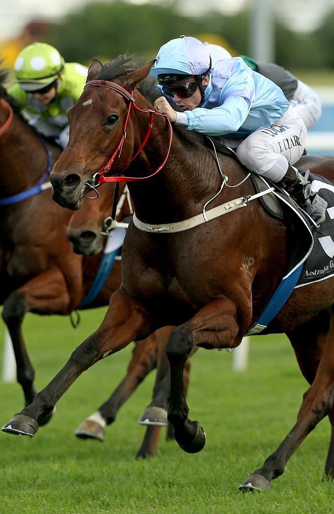 Tim Clark wins on Avoid Lightning at Randwick. Picture: Damian Shaw