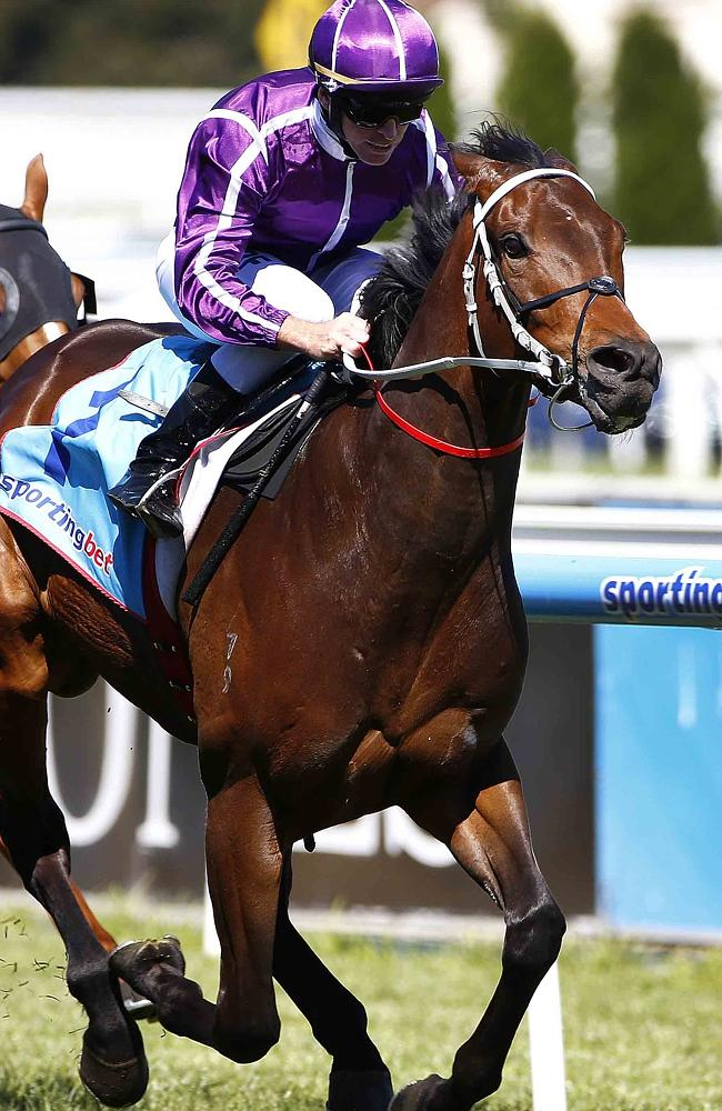 Boban's famous last-to-first victory in the 2013 Moonga Stakes at Caulfield. Picture: Mic