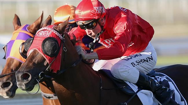 Trainers Peter and Paul Snowden made the decision to press on to the Stradbroke Handicap