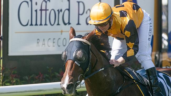 There has been a trickle of money to suggest Hidden Pearl can bounce back to the winner's