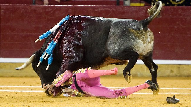 Bullfighter Juan Jose Padilla is gored