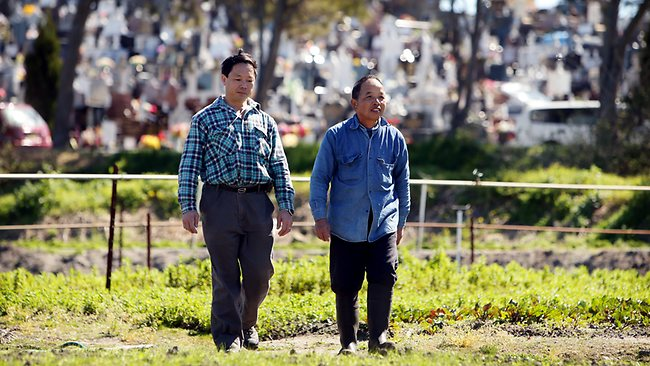 Chinese garden farmers