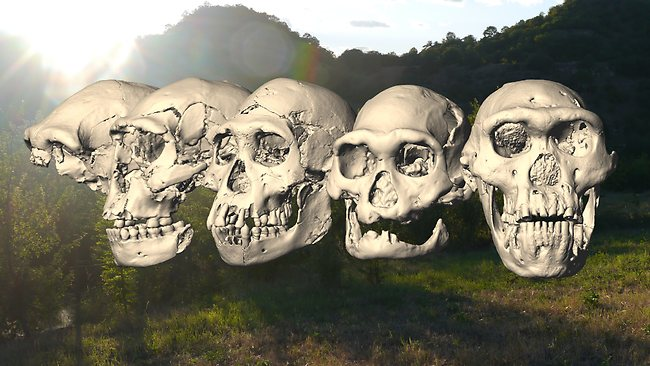 Dmanisi skulls 1 - 5 and landscape