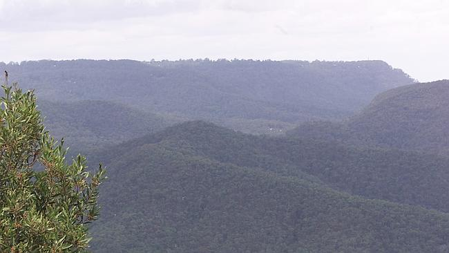 The site of a proposed cableway project proposed for Springbrook.