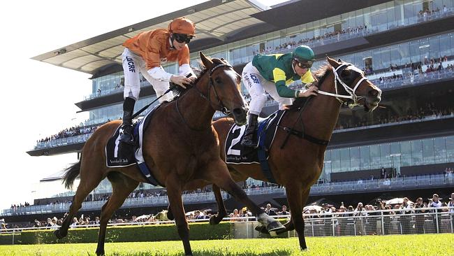 Fresh legs: Moriarty (right) wins the Group 3 Craven Plate at Randwick last October. Pict