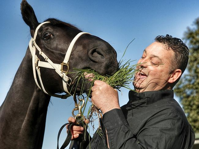 Trainer Tommy Hughes and Black Vanquish. Picture: Colleen Petch