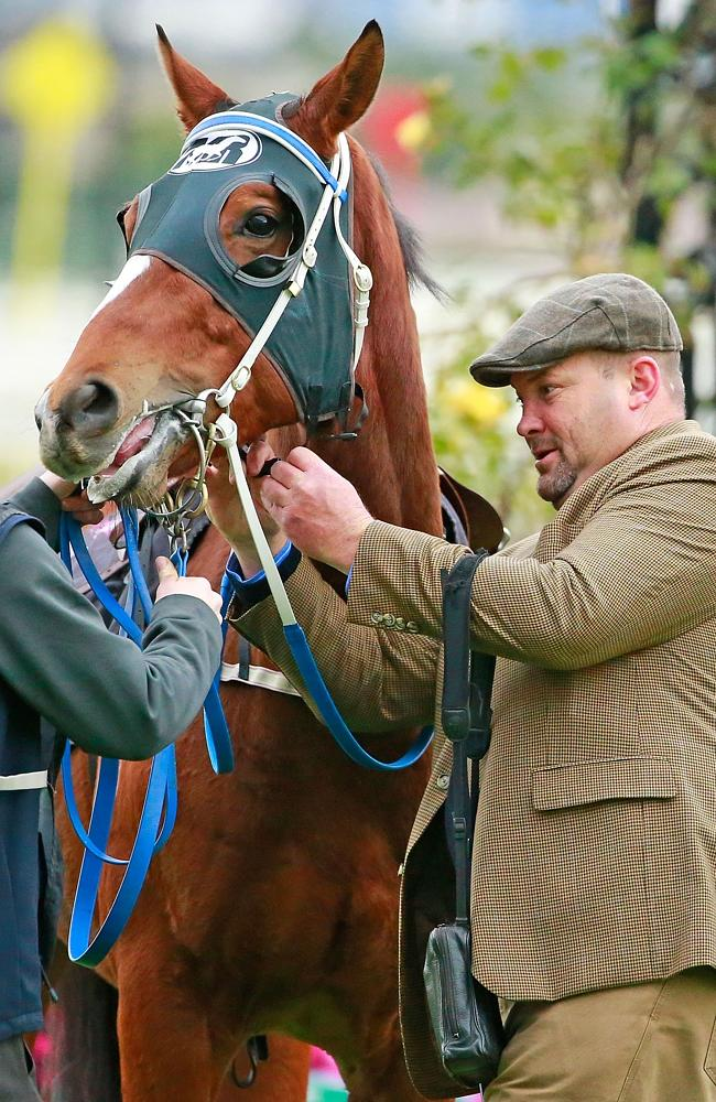 Trainer Peter Moody says he is nervous every time one of his horses is saddled up for a r