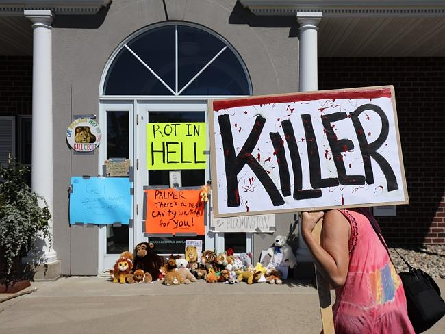 Held to account ... Protesters call attention to the alleged poaching of Cecil the lion,