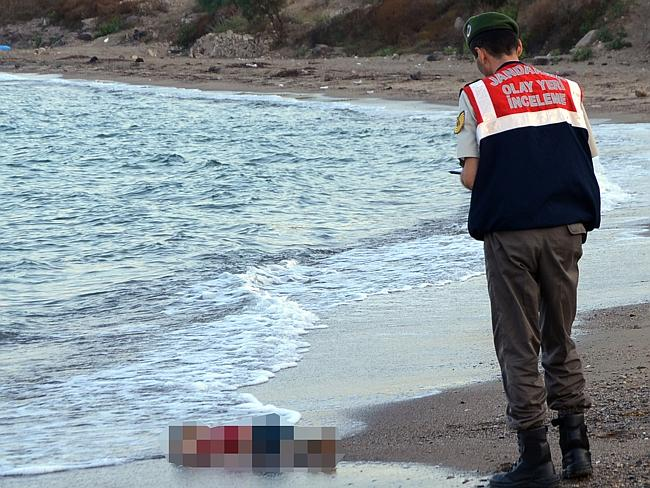 Tragic ... the image of the little boy washed up on a beach near the Turkish resort of Bo