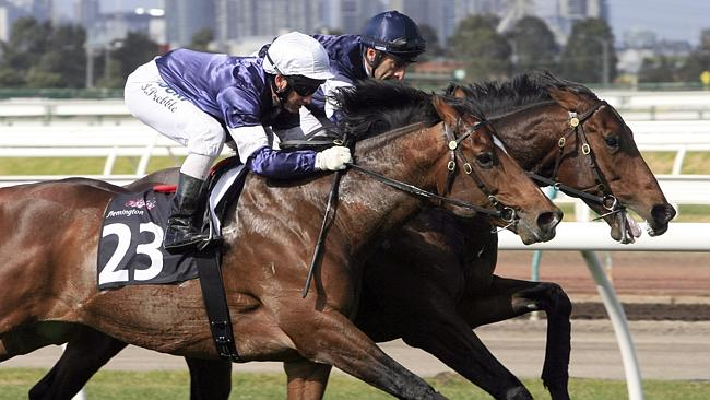 Green Moon, ridden by Brett Prebble (left), works out with stablemate Thought Worthy.