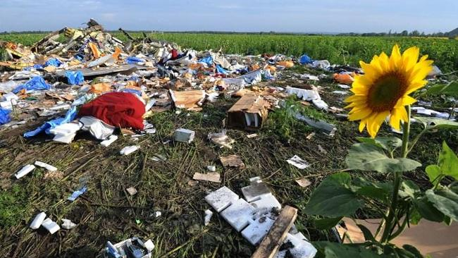 The wreckage of Malaysia Airlines flight MH17 two days after it crashed in a sunflower fi