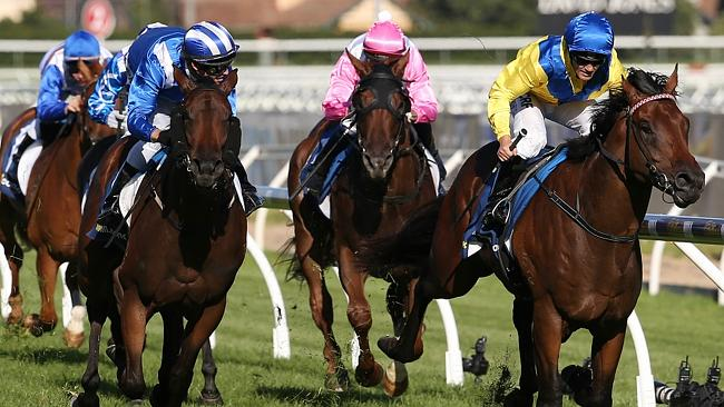 Blue Diamond winner Pride Of Dubi, right, has claims to be champion two-year-old. Picture