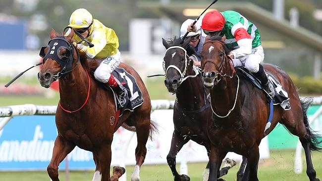 Criterion, left, is ready to peak in the Queen Elizabeth Stakes after finishing second to