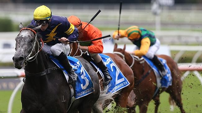 Chautauqua will be hard to beat in the All Aged Stakes.