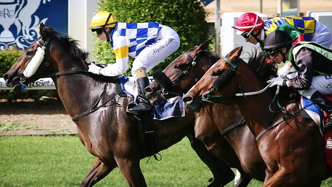 Punters in Queensland will be able watch races on their phone with the new UBET app. Pict