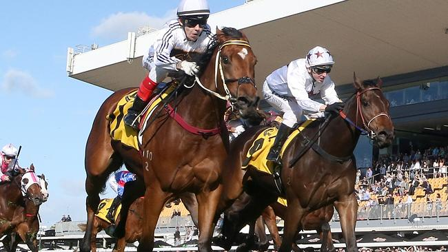 Jockey Luke Tarrant becomes only the second Queensland jockey in the last 10 years to be