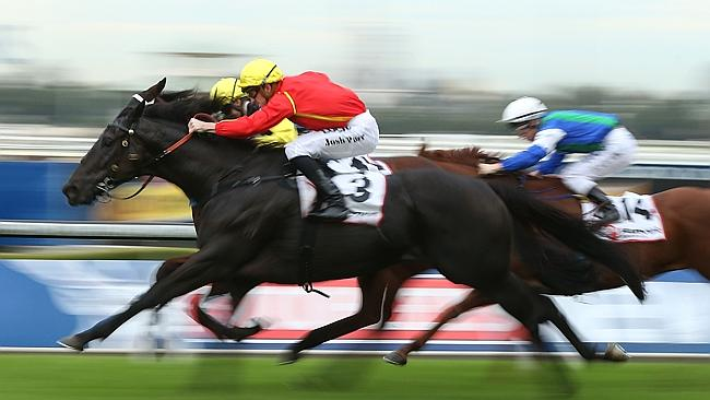 Aussies Love Sport wins the Ranvet Handicap at Rosehill Gardens on May 30. Picture: Getty