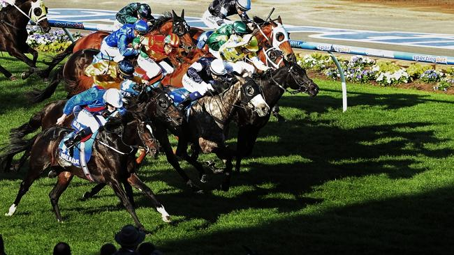 The timing of the cobalt hearings could have a negative impact on the spring carnival. Pi
