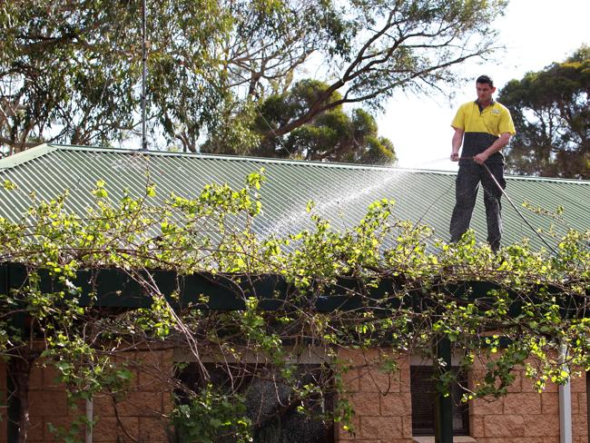 A man waters down his roof in Windsor Downs / Picture: Stephen Cooper